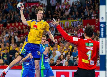 Foto do jogo da Suécia no Europeu 2016