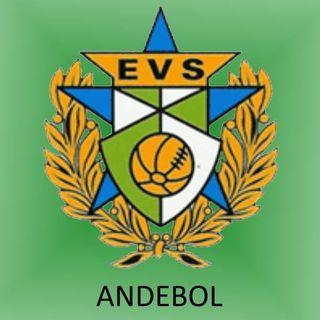 Logo Estrela e Vigorosa Sport