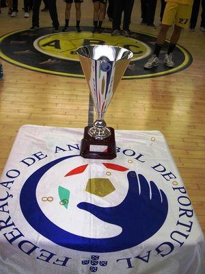 Taça do Campeão Nacional Iniciados Masculinos 2012-13
