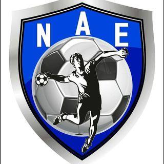 Logo Núcleo de Andebol do Entroncamento (NAE)