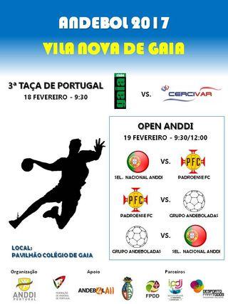 Cartaz 3ª Taça de Portugal de Andebol-7 ANDDI - VN Gaia