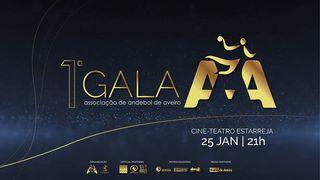 1ª Gala da Associação de Andebol de Aveiro